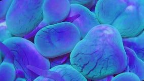 Blauw en groen bellenkoraal in lichte stroom stock video