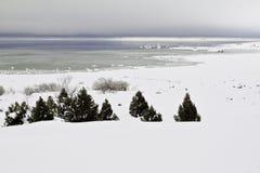 Blauw en groen meer in de winter Stock Fotografie