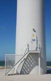 Blauw en wit bij de kust Royalty-vrije Stock Afbeelding