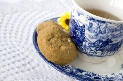 Blauw en wit theestel Royalty-vrije Stock Foto's