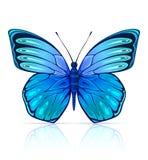 Blauw geïsoleerdl vlinderinsect vector illustratie
