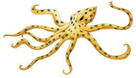 Blauw-geringde octopus royalty-vrije illustratie
