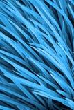 Blauw gras Royalty-vrije Stock Fotografie
