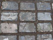 Blauw-grijs betegelde bestrating op een straat in Rochester, Kent royalty-vrije stock afbeeldingen