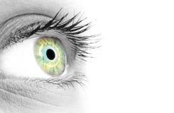 Blauw/groen oog van een mooie vrouw Stock Afbeeldingen