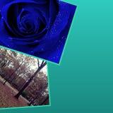 Blauw haarlok Stock Fotografie