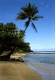 Blauw Hawaï royalty-vrije stock fotografie