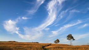 Blauw hemel en dalingslandschap Royalty-vrije Stock Foto's