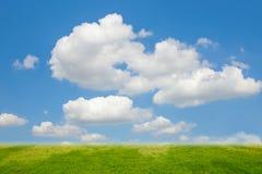 Blauw Hemel en gras Stock Afbeelding