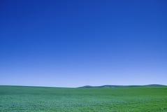 Blauw Hemel Groen Gebied Stock Afbeeldingen