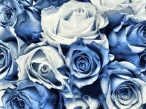 Blauw het huwelijksboeket van Delft Stock Foto's