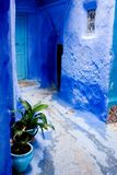 Blauw huis Stock Foto