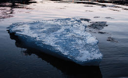 Blauw ijsblok die in de rivier drijven Royalty-vrije Stock Foto's