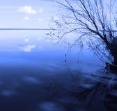 Blauw landschap met een eenzame boom Stock Afbeeldingen