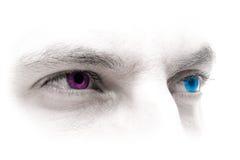 Blauw-magenta Ogen stock fotografie