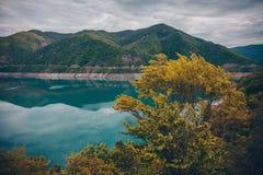 Blauw meer en gele struik in bergen stock afbeeldingen
