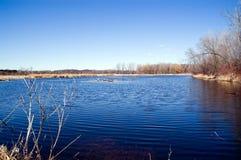 Blauw meer in het park stock afbeelding