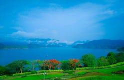 Blauw Meer Mountain View met Mooie Bloembomen Royalty-vrije Stock Fotografie