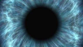 Blauw menselijk en oog die uitzetten aangaan Zeer gedetailleerd extreem close-up van iris en leerling stock video
