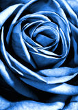 Blauw nam toe royalty-vrije stock afbeeldingen