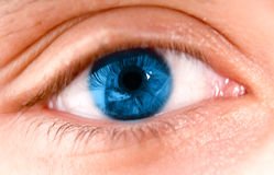 Blauw oog Stock Afbeelding