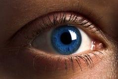 Blauw Oog Stock Foto