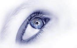 Blauw oog stock foto's