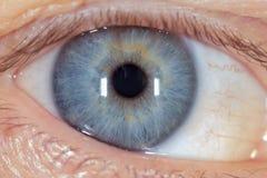Blauw oog op het man gezicht Macro stock foto