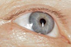 Blauw oog op het man gezicht stock foto's