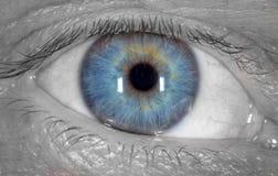 Blauw oog op het zwart-witte gezicht van een mens Macro stock fotografie