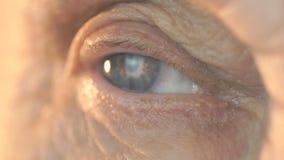 Blauw oog van vrouw op middelbare leeftijd Sluit omhoog stock video