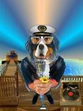 Blauw oude zeeman Stock Foto's