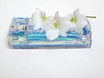 Blauw parfum Stock Foto