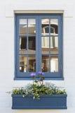 Blauw raamkozijn met plantersvakje stock afbeelding
