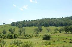 Blauw Ridge Appalachia Royalty-vrije Stock Foto's