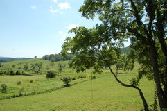 Blauw Ridge Appalachia Stock Foto