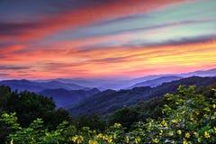 Blauw Ridge Mountain Color stock foto