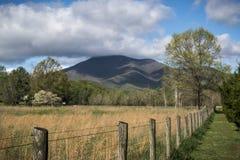 Blauw Ridge Mountain Landscape in Land stock afbeelding