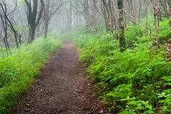 Blauw Ridge Mountain Southern Appalachian Trail Royalty-vrije Stock Foto's