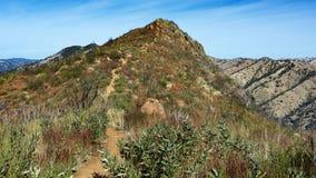 Blauw Ridge Trail, de Koude Canion van Stebbins stock foto