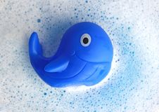 Blauw rubber wahle op wit zeepschuim royalty-vrije stock afbeeldingen