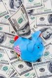Blauw spaarvarken met dollars Stock Fotografie