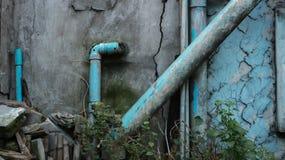 Blauw Teal Painted Water Pipes op Vuile Oude Muur met Groen Plan stock foto's