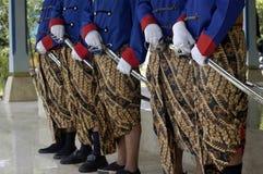 Blauw tropperkoninkrijk royalty-vrije stock afbeelding