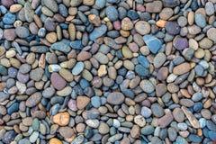 Blauw viooltje overzeese stenen als achtergrond Stock Foto