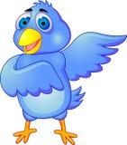 Blauw vogelbeeldverhaal Royalty-vrije Stock Foto