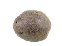 Blauwe aardappel stock afbeelding
