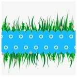 Blauwe achtergrond met groen gras Royalty-vrije Stock Fotografie