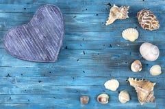 Blauwe achtergrond met overzeese shells Royalty-vrije Stock Afbeelding