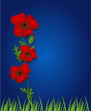 Blauwe achtergrond met rood onkruid Royalty-vrije Stock Afbeeldingen